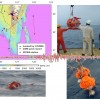 <!--:tw-->Monitoring the offshore earthquakes around Taiwan <!--:-->